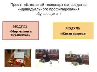 Проект «Школьный технопарк как средство индивидуального профилирования обучаю