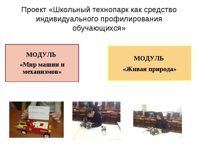 Проект «Школьный технопарк как средство индивидуального профилирования обучаю...