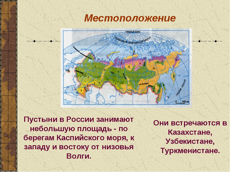 Местоположение Пустыни в России занимают небольшую площадь - по берегам Каспи...