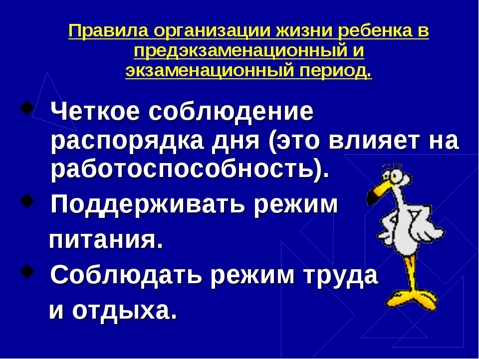 Правила организации жизни ребенка в предэкзаменационный и экзаменационный пер...