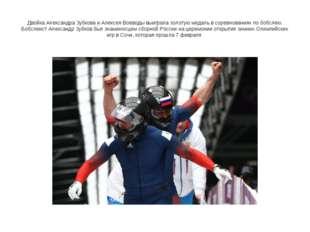 Двойка Александра Зубкова и Алексея Воеводы выиграла золотую медаль в соревно