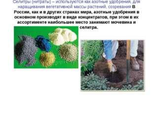 Селитры (нитраты) – используются как азотные удобрения, для наращивания вегет