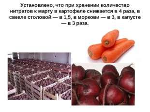 Установлено, что при хранении количество нитратов к марту в картофеле снижает