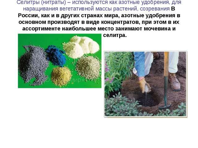 Селитры (нитраты) – используются как азотные удобрения, для наращивания вегет...