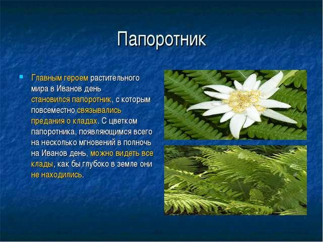 Папоротник Главным героем растительного мира в Иванов день становилсяпапорот...
