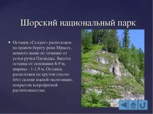 Шорский национальный парк Останец «Солдат» расположен на правом берегу реки М