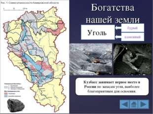 Богатства нашей земли Уголь Кузбасс занимает первое место в России по запасам