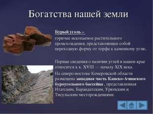 Бурый уголь – горючее ископаемое растительного происхождения, представляющее