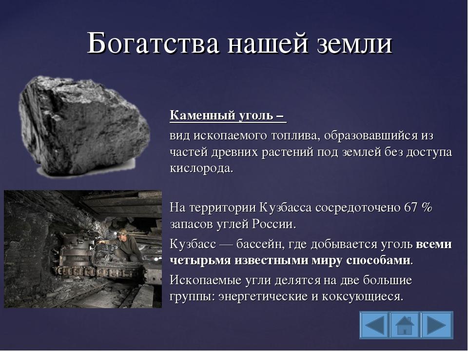 Каменный уголь – вид ископаемого топлива, образовавшийся из частей древних ра...