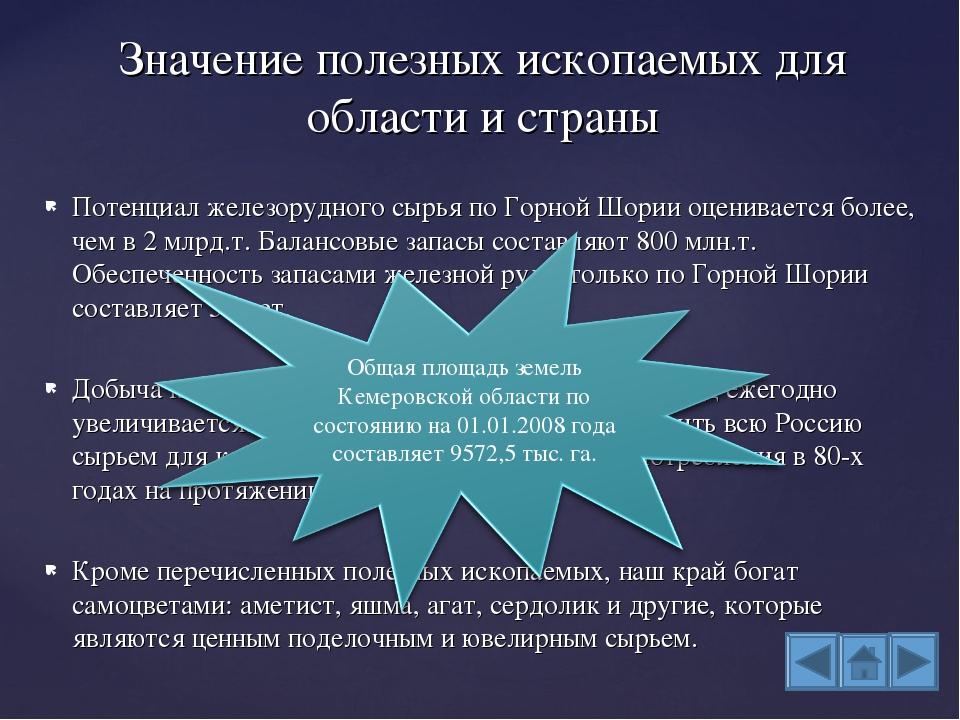 Потенциал железорудного сырья по Горной Шории оценивается более, чем в 2 млрд...