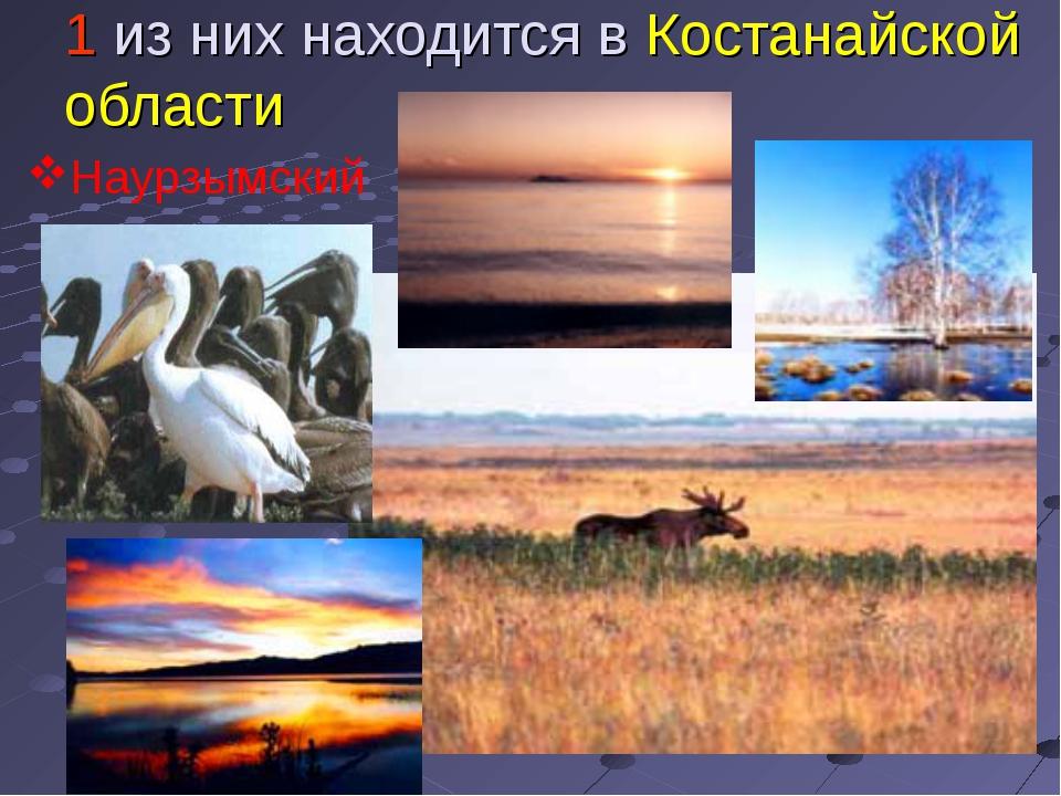 1 из них находится в Костанайской области Наурзымский