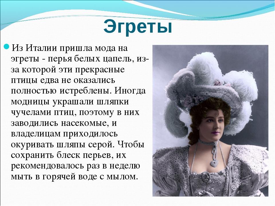 Эгреты Из Италии пришла мода на эгреты - перья белых цапель, из-за которой эт...
