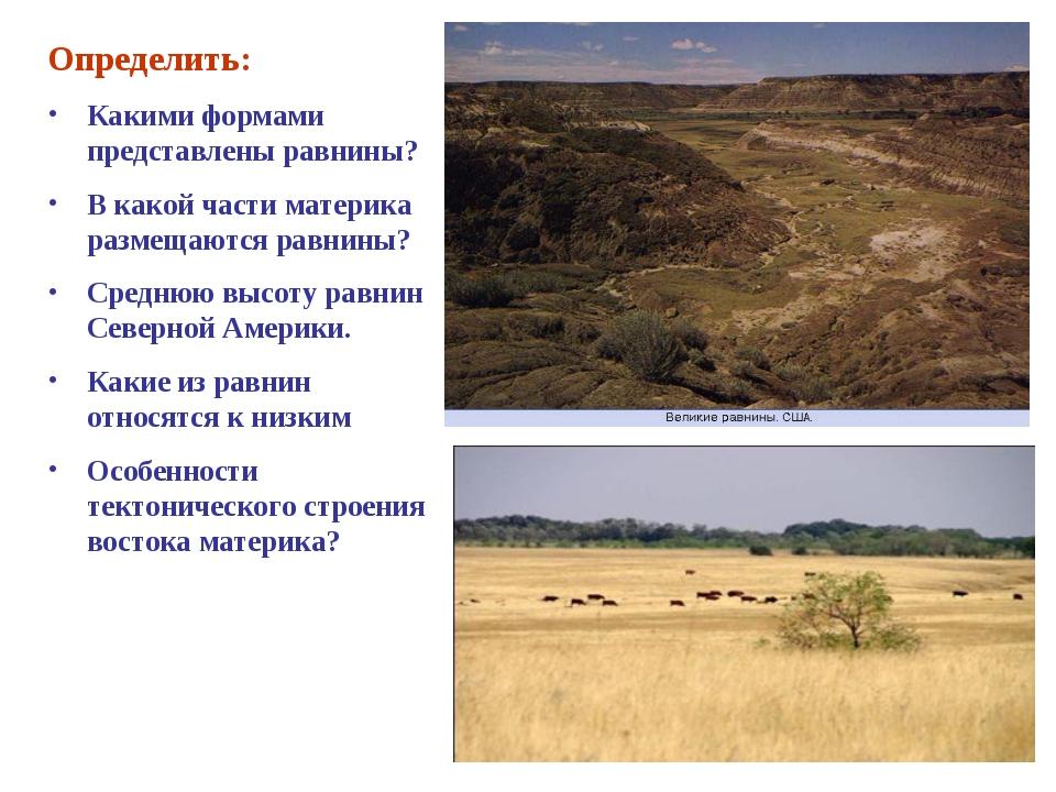 Определить: Какими формами представлены равнины? В какой части материка разме...