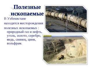 В Узбекистане находятся месторождения полезных ископаемых : природный газ и н