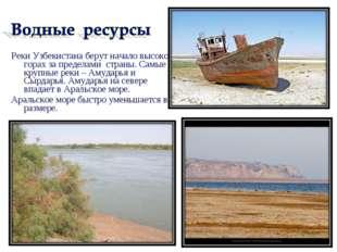 Реки Узбекистана берут начало высоко в горах за пределами страны. Самые кру