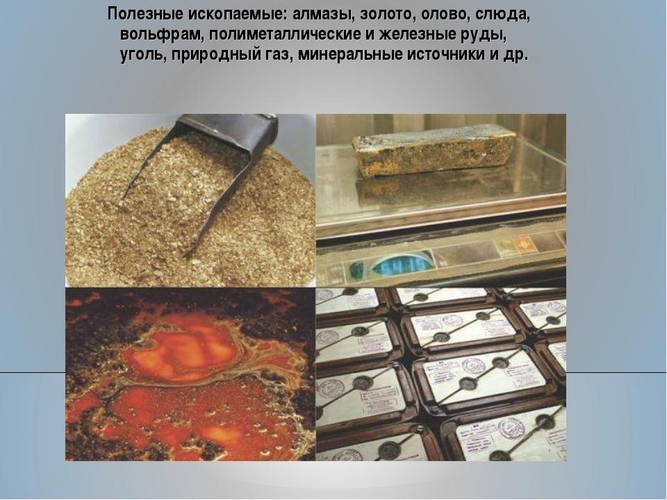 Полезные ископаемые: алмазы, золото, олово, слюда, вольфрам, полиметаллически...