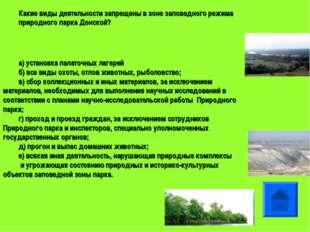 Какие виды деятельности запрещены в зоне заповедного режима природного парка