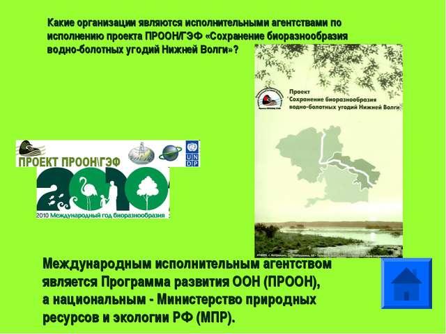 Какие организации являются исполнительными агентствами по исполнению проекта...