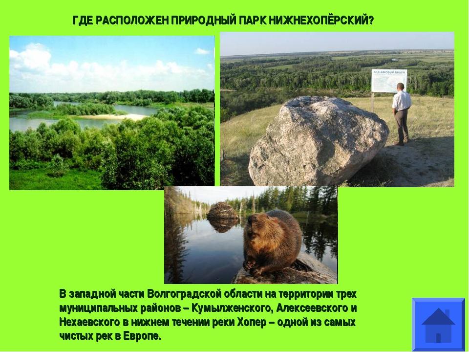 В западной части Волгоградской области на территории трех муниципальных район...