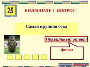 ВНИМАНИЕ ! ВОПРОС Самая крупная сова Правильный ответ филин