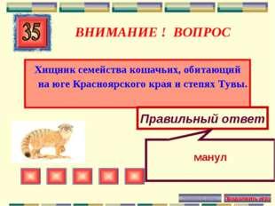 ВНИМАНИЕ ! ВОПРОС Хищник семейства кошачьих, обитающий на юге Красноярского к