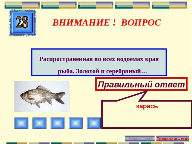 ВНИМАНИЕ ! ВОПРОС Распространенная во всех водоемах края рыба. Золотой и сере...