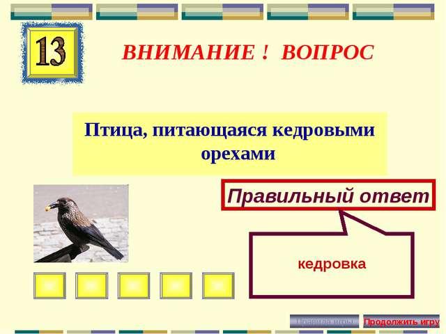 ВНИМАНИЕ ! ВОПРОС Птица, питающаяся кедровыми орехами Правильный ответ кедровка