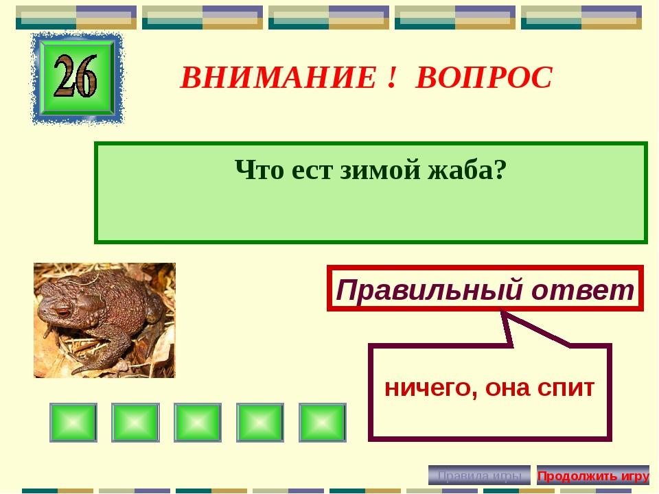 ВНИМАНИЕ ! ВОПРОС Что ест зимой жаба? Правильный ответ ничего, она спит