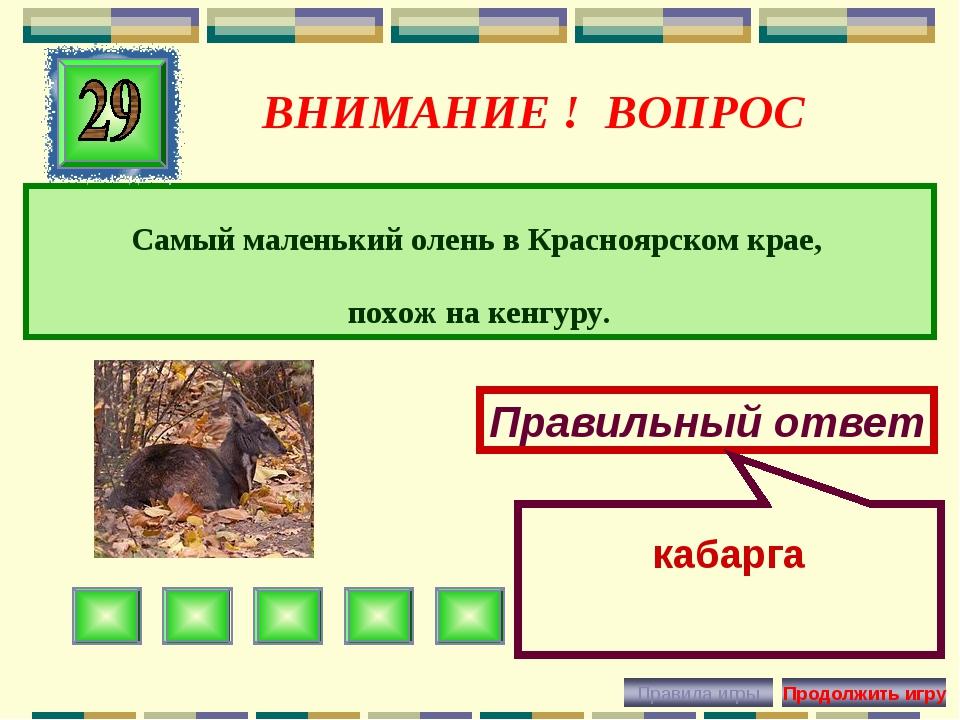ВНИМАНИЕ ! ВОПРОС Самый маленький олень в Красноярском крае, похож на кенгуру...