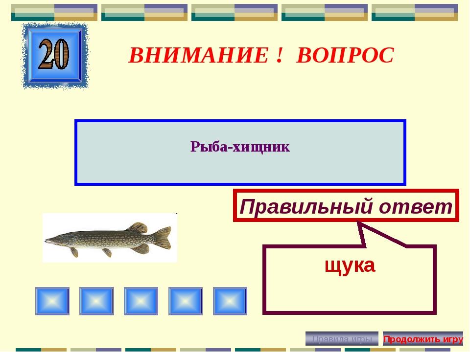 ВНИМАНИЕ ! ВОПРОС Рыба-хищник Правильный ответ щука
