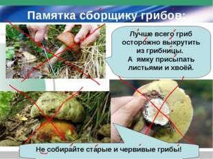 Памятка сборщику грибов: Лучше всего гриб осторожно выкрутить из грибницы. А