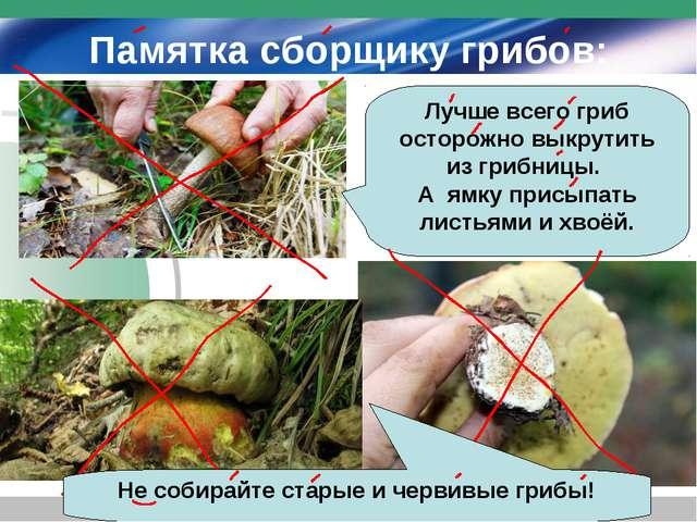 Памятка сборщику грибов: Лучше всего гриб осторожно выкрутить из грибницы. А...