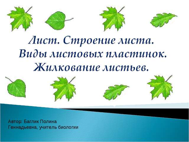 Автор: Баглик Полина Геннадьевна, учитель биологии