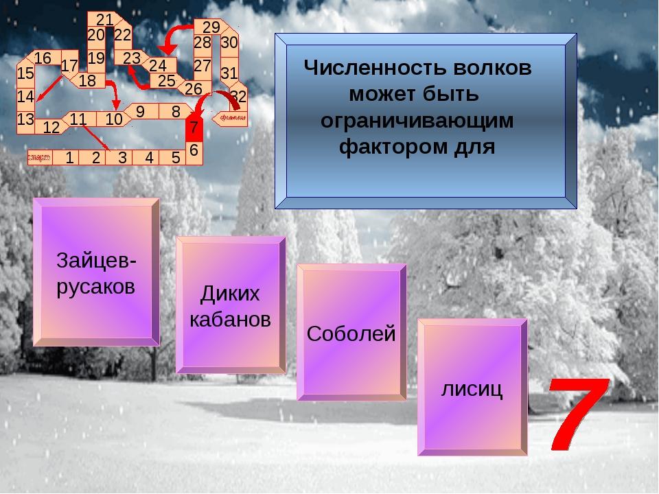 Зайцев- русаков Диких кабанов Соболей лисиц Численность волков может быть огр...