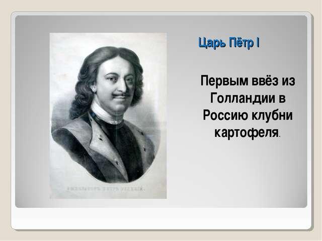 Царь Пётр I Первым ввёз из Голландии в Россию клубни картофеля.