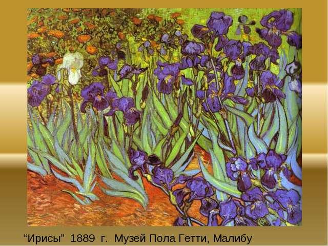 """Ирисы"" 1889 г. Музей Пола Гетти, Малибу"