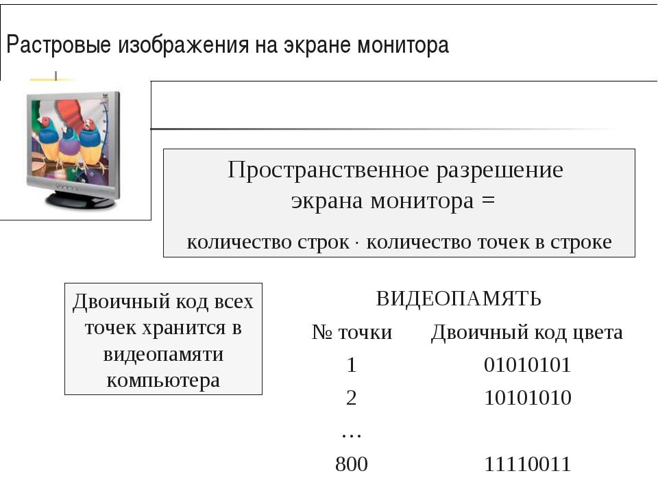 Растровые изображения на экране монитора Двоичный код всех точек хранится в в...