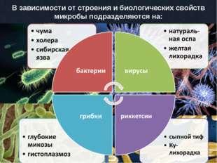 В зависимости от строения и биологических свойств микробы подразделяются на: