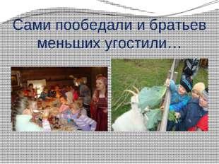 Сами пообедали и братьев меньших угостили…