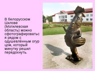 В белорусском Шклове (Могилевская область) можно сфотографироваться рядом с