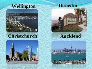 Wellington Dunedin Christchurch Aucklend