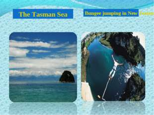 The Tasman Sea Bungee jumping in New Zealand