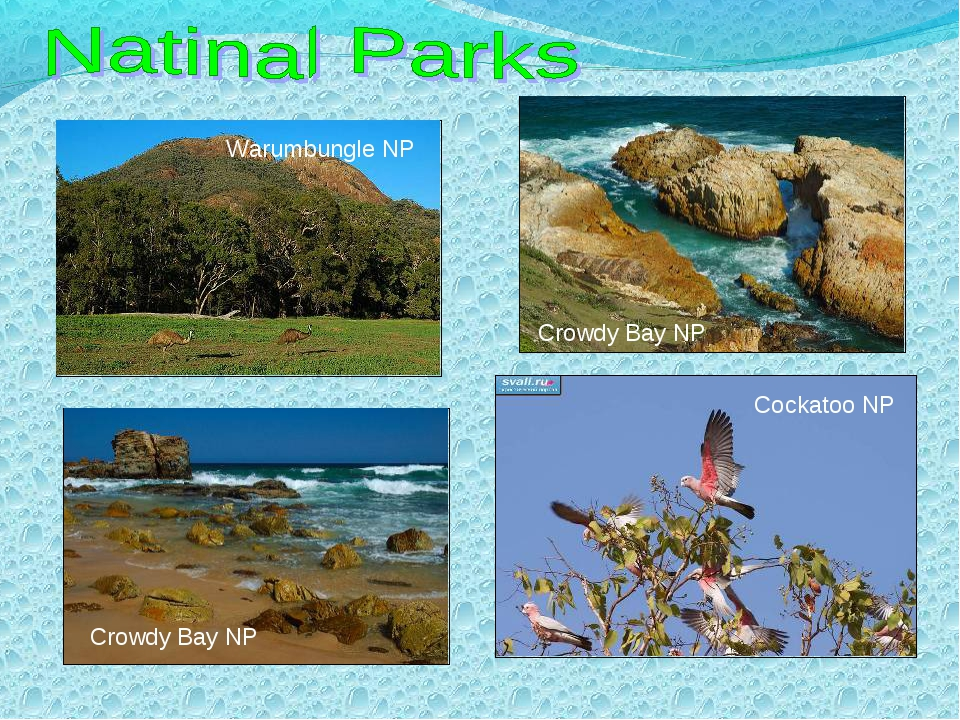 Warumbungle NP Crowdy Bay NP Crowdy Bay NP Cockatoo NP