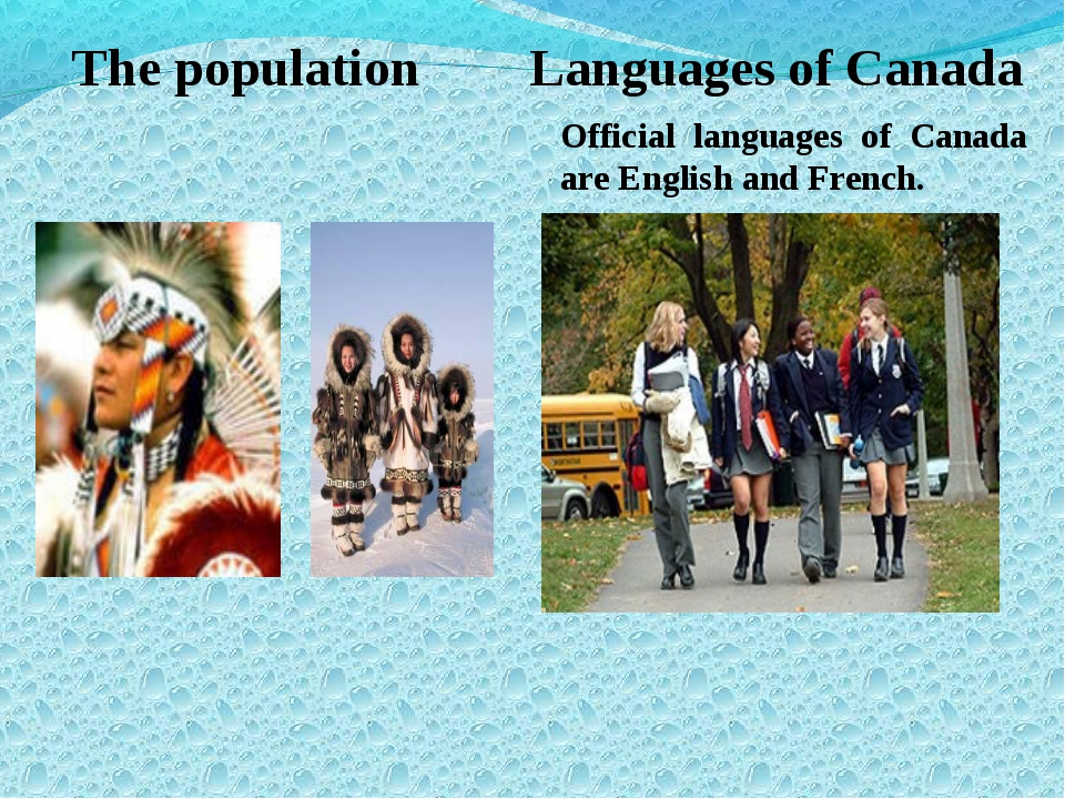 The population Languages of Canada Official languages of Canada are English a...
