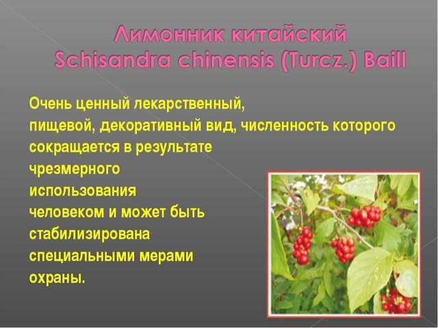 Очень ценный лекарственный, пищевой, декоративный вид, численность которого с...