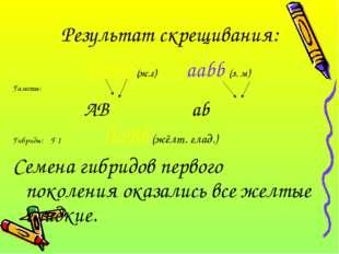 Результат скрещивания:  AABB (ж.г) aabb (з. м) Гаметы: AB ab Гибриды: F 1 A