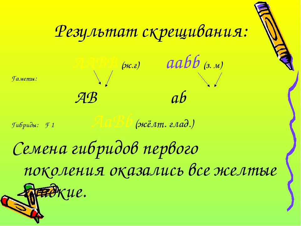Результат скрещивания:  AABB (ж.г) aabb (з. м) Гаметы: AB ab Гибриды: F 1 A...
