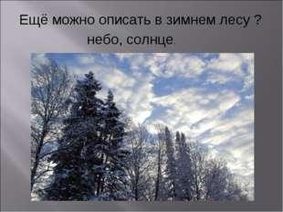 Ещё можно описать в зимнем лесу ? небо, солнце.