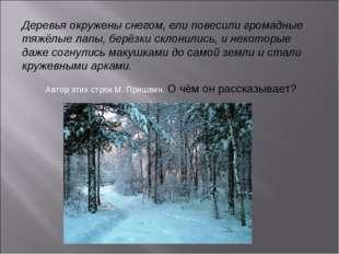 Деревья окружены снегом, ели повесили громадные тяжёлые лапы, берёзки склонил