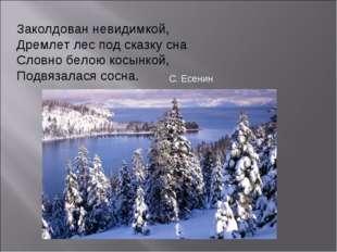 Заколдован невидимкой, Дремлет лес под сказку сна Словно белою косынкой, Подв